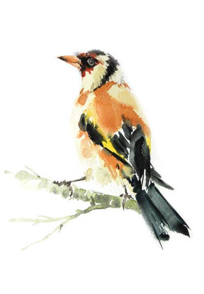 Birdman Painting - Goldfinch Bird  by Pornthep Piriyasoranant
