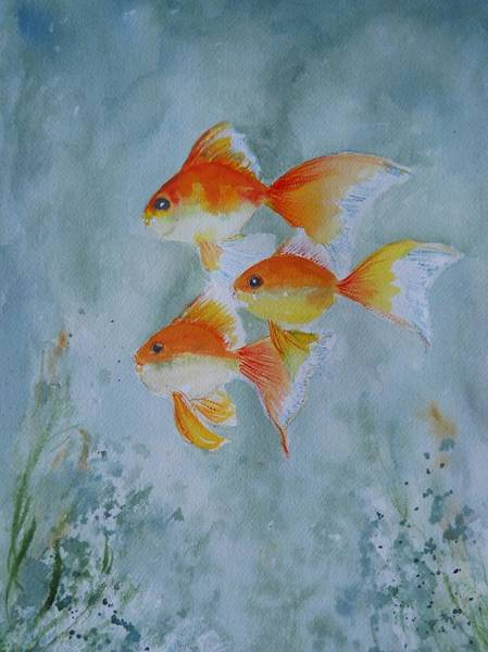 Painting - Goldfish by Audrey Bunchkowski