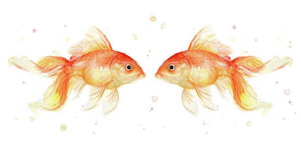Heart Gold Painting - Goldfish Love Watercolor by Olga Shvartsur