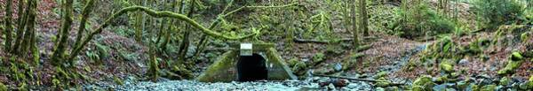 Photograph - Goldstream Park Tunnel Panorama by Adam Jewell