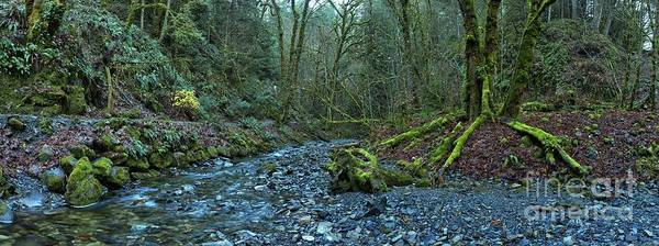 Photograph - Goldstream Victoria Panorama by Adam Jewell