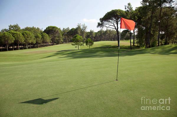 Wall Art - Photograph - Golf  by American School