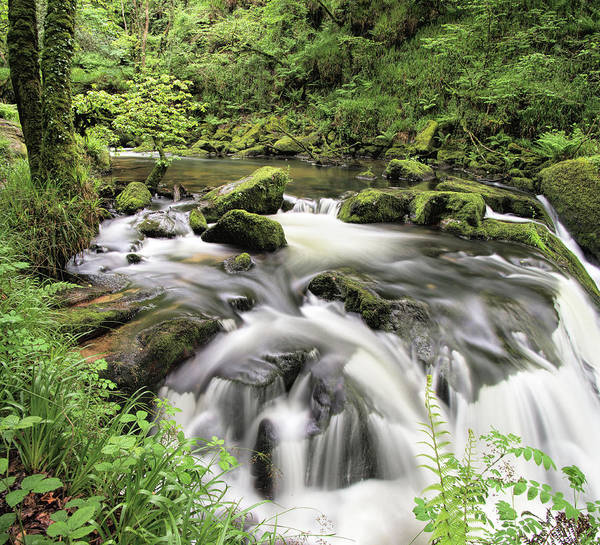Photograph - Golitha Falls by Pete Hemington