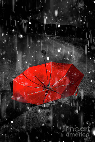 Alone Digital Art - Gone With The Rain by Jorgo Photography - Wall Art Gallery