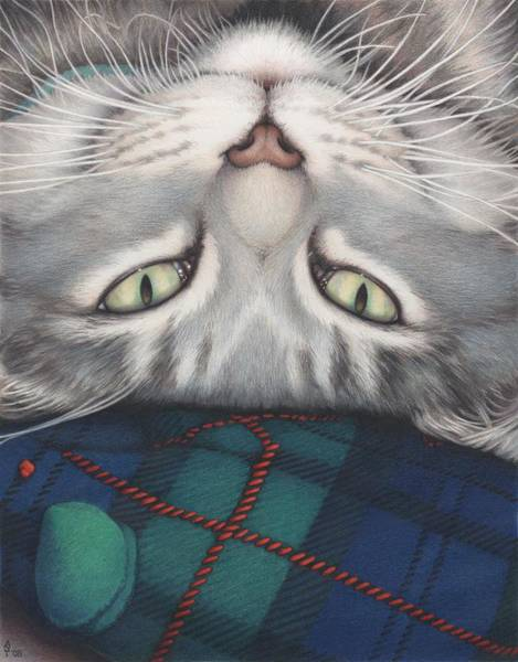 Kitten Drawing - Goobie - A Boy And His Toy by Amy S Turner