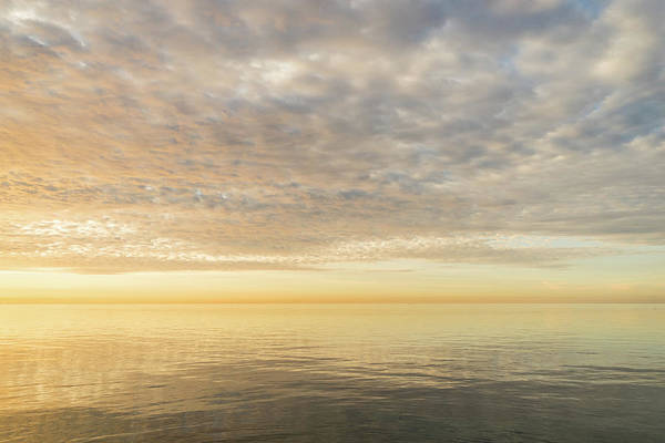 Photograph - Good For The Soul - Cyber Yellow And Soft Peach Skyscape by Georgia Mizuleva
