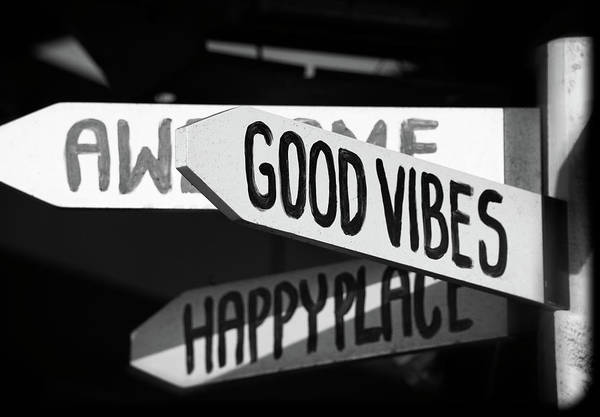 Photograph - Good Good Good Good Vibrations by Joan Carroll
