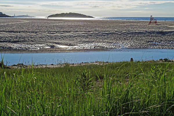 Photograph - Good Harbor Beach Through The Grass by Toby McGuire