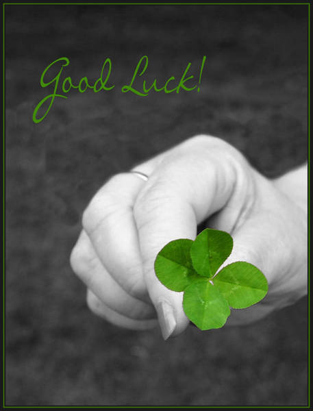 Four Leaf Clover Photograph - Good Luck by Kristin Elmquist