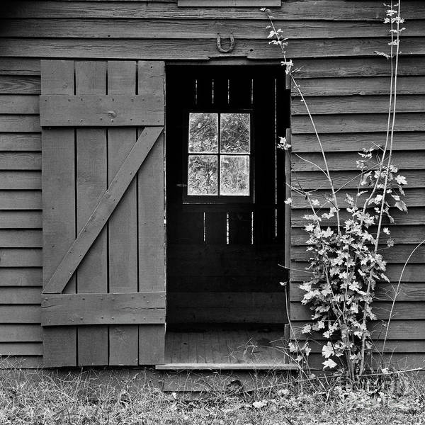Photograph - Good Luck Shed by Patrick M Lynch