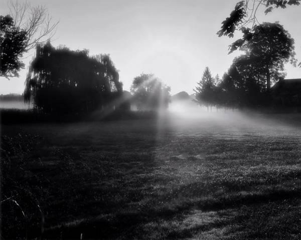Photograph - Good Morning 2 by John Feiser