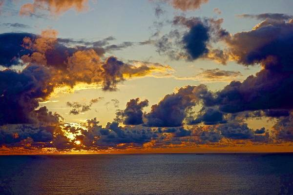 Photograph - Good Morning Ac by Joan Reese