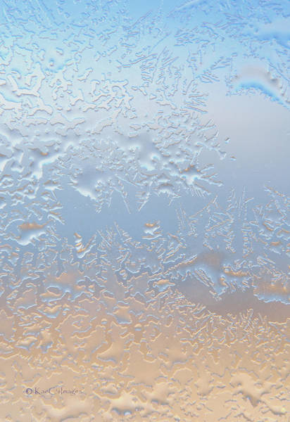 Photograph - Good Morning Ice by Kae Cheatham