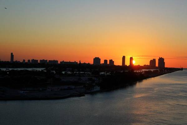 Photograph - Good Morning Miami by Shelley Neff