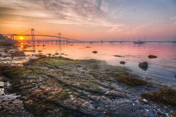 Newport Ri Wall Art - Photograph - Good Morning Newport by Edward King