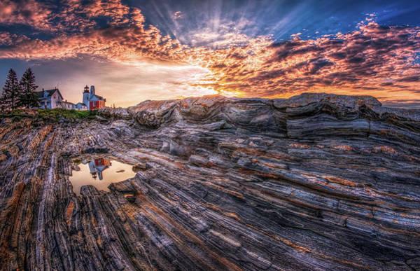 Photograph - Good Morning Starshine by Neil Shapiro