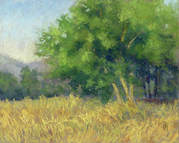 Painting - Good Morning Summer by David King