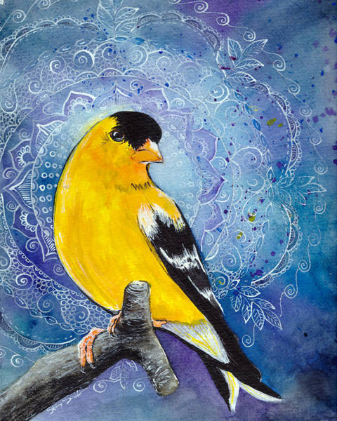 Wall Art - Painting - Good Night Goldfinch by Susy Soulies
