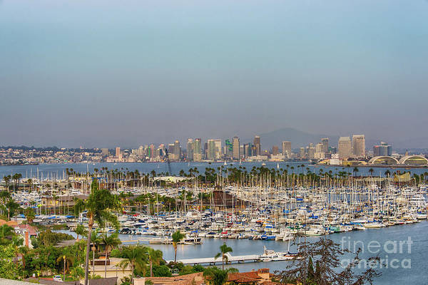 Photograph - Good Night San Diego by David Levin