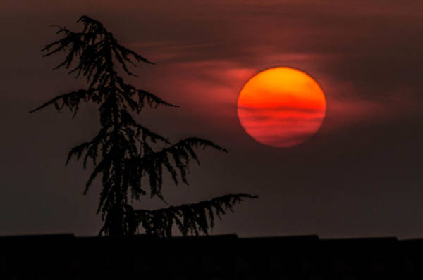 Photograph - Good Night Sun by Wolfgang Stocker