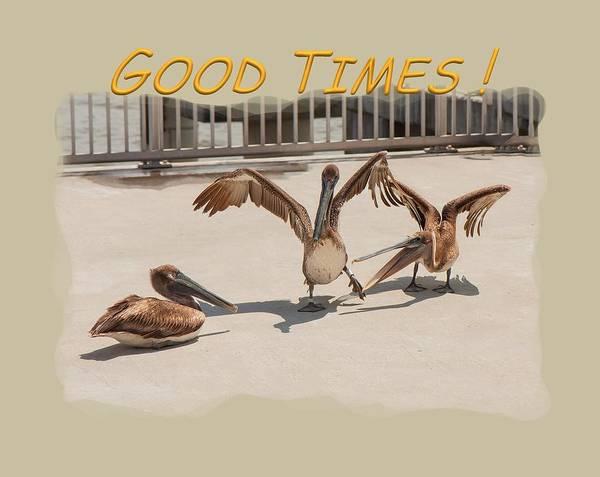 Photograph - Good Times by John M Bailey
