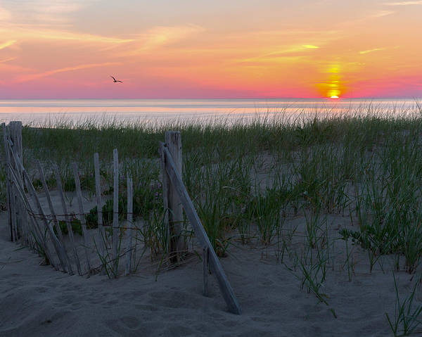 Photograph - Goodnight Cape Cod 2015 by Bill Wakeley