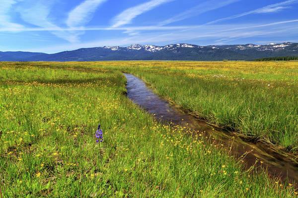 Photograph - Goodrich Creek by James Eddy