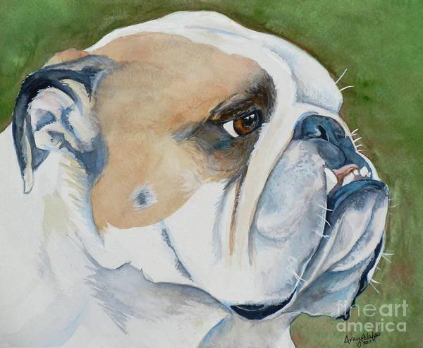 English Bulldog Painting - Gordie The English Bulldog by Amy Pilafas