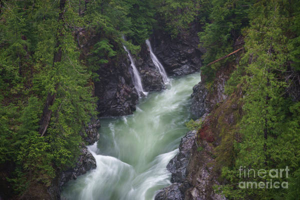 Photograph - Gordon River by Carrie Cole