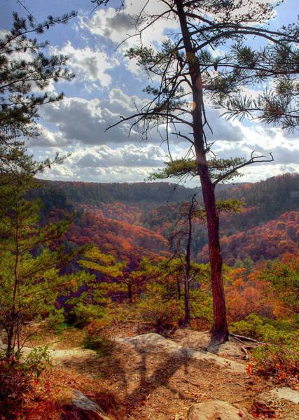 Photograph - Gorge Overlook by Sam Davis Johnson