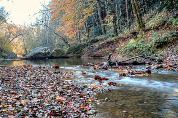 Photograph - Gorge Stream 10 by Sam Davis Johnson