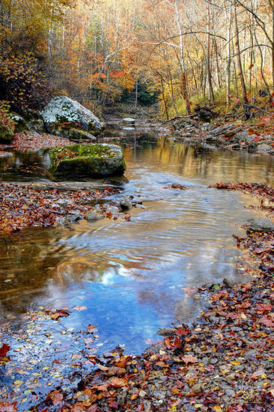 Photograph - Gorge Stream 11 by Sam Davis Johnson