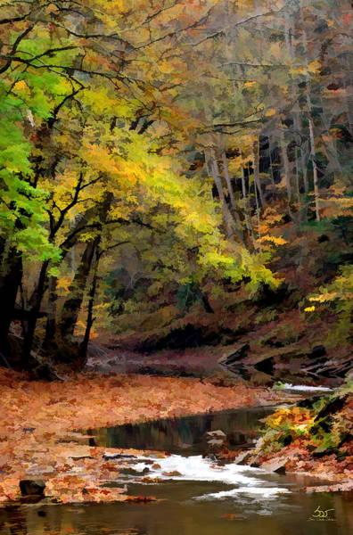 Photograph - Gorge Stream 5 by Sam Davis Johnson