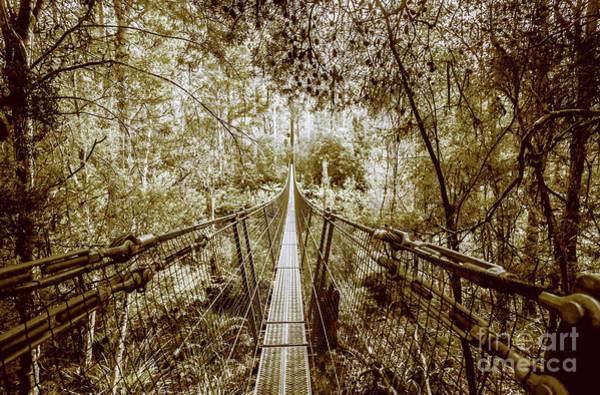 Dam Wall Art - Photograph - Gorge Swinging Bridges by Jorgo Photography - Wall Art Gallery