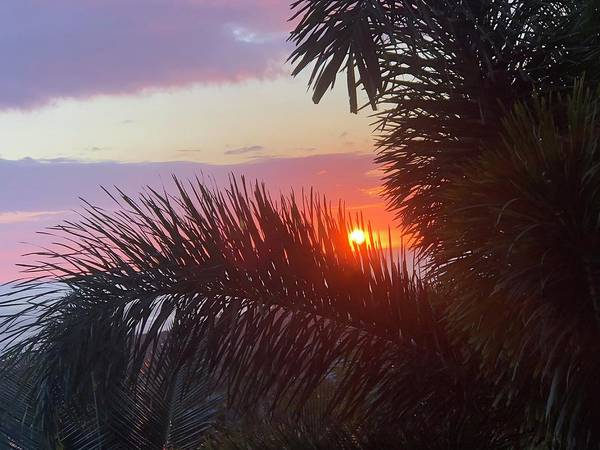Photograph - Gorgeous Hawaiian Sunset by Karen Nicholson