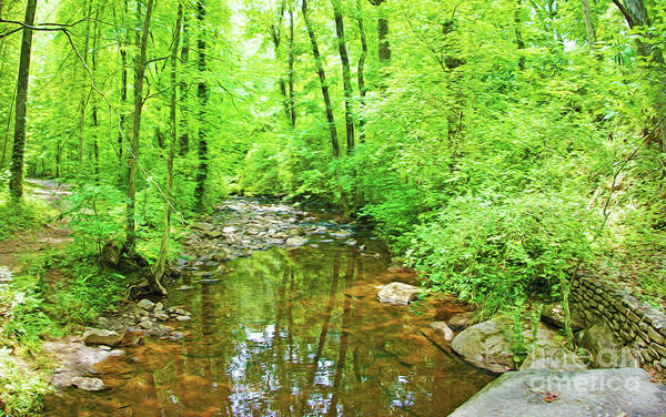 Copper Mountain Photograph - Georgia Stream In Summer by Laura D Young