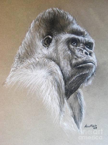 Gorilla Painting - Gorilla by Anastasis  Anastasi