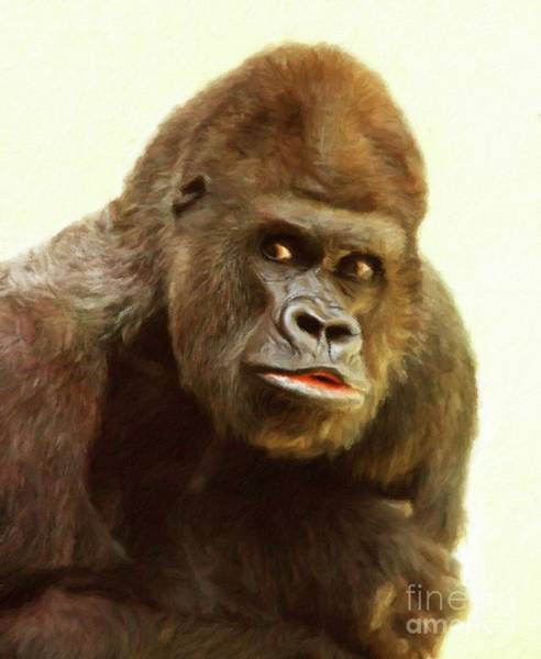 Gorilla Painting - Gorilla by Sarah Kirk