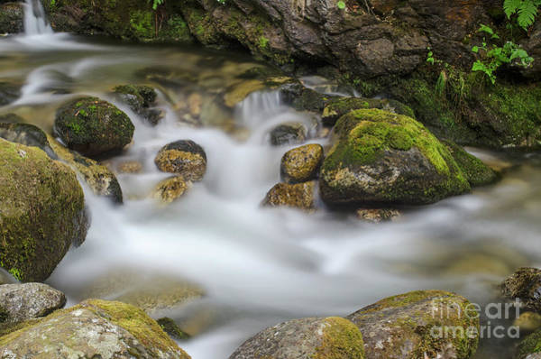 Photograph - Goritsa Waterfalls Stream-bulgaria by Steve Somerville