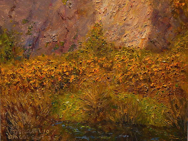 Nz.impressionist Painting - Gorse Near The Swamp by Terry Perham