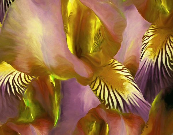 Purple Iris Mixed Media - Gossameera 30 by Lynda Lehmann