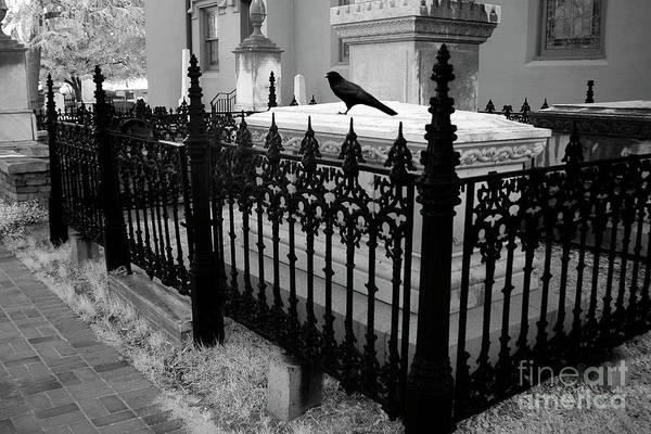 Revolutionary Photograph - Gothic Haunting Surreal Cemetery Gate Coffin With Raven - South Carolina Revolutionary War Grave by Kathy Fornal