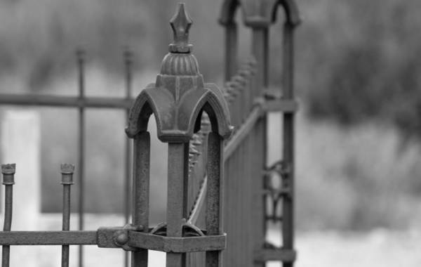 Photograph - Gothic Ornamental Fence In Boothill by Colleen Cornelius