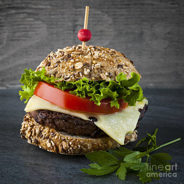 Wall Art - Photograph - Gourmet Hamburger by Elena Elisseeva