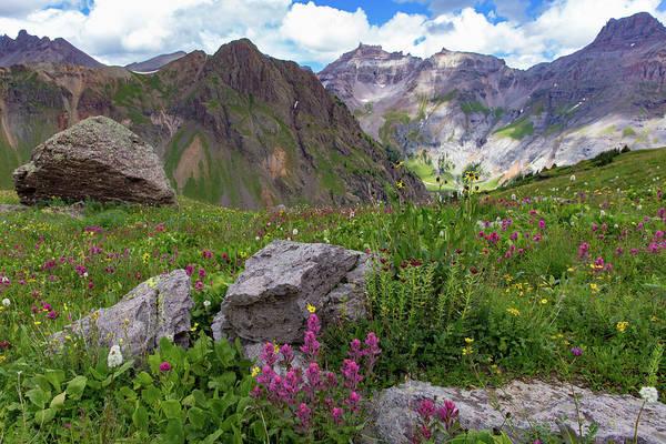 Alpine Meadows Photograph - Governor's Garden by Bridget Calip