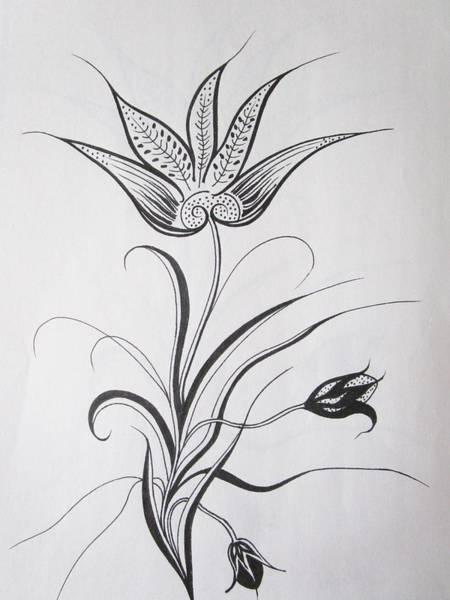 Drawing - Graceful by Rosita Larsson