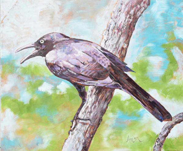 Blackbird Painting - Grackle #1 by Amber Foote