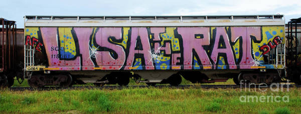 Wall Art - Photograph - Graffiti Lisa The Rat by Bob Christopher