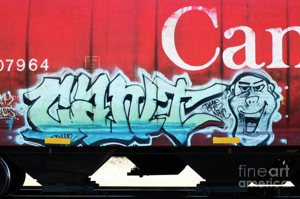 Wall Art - Photograph - Graffiti Riding The Rails 3 by Bob Christopher