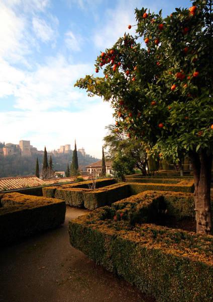 Wall Art - Photograph - Granada Garden by Bryan Hochman